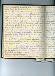 Manuscript journal of a South African lady, 1948